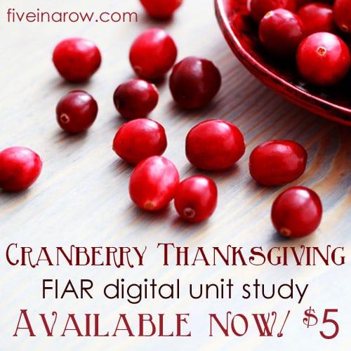 CranberryThanksgivingAvaila