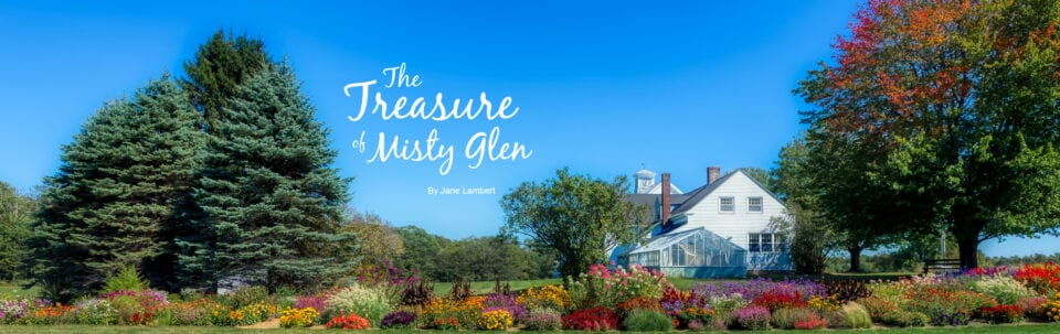 The Treasure of Misty Glen